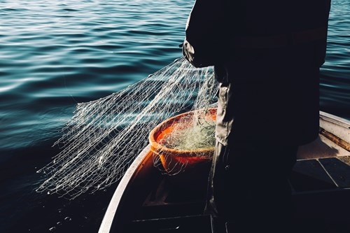 Person on boat with fishing net